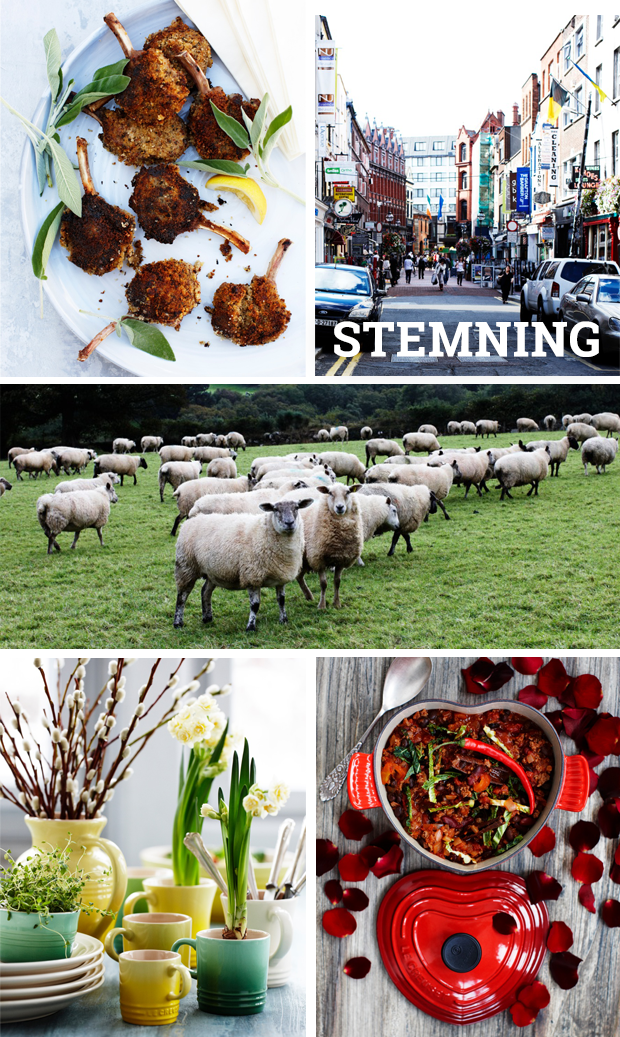 foodstyling_irland-stemning